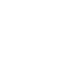 architecture design & development